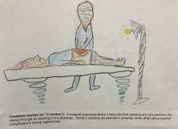 Students often loved - or avoided! - illustrating one of the passages about birth.  I gave student groups free choice of what part of the book they were interested in illustrating. [Image description: A medical worker is performing a C section and surgically removing a baby from the body of a pregnant person.]